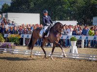 Zum Glück mit Nicola Haug im Finale der vierjährigen Reitpferde Stuten und Wallache